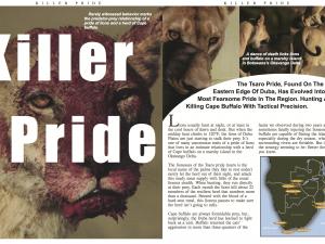 Killer Pride